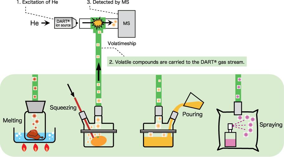 Volatimeship_DART-MS--System
