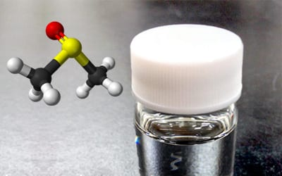 How can I concentrate DMSO in my sample?